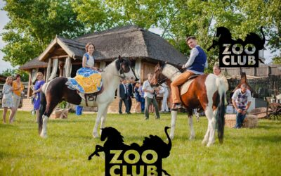 Plimbări cu caii,ZooClub